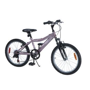 Denise's bike