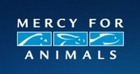 Click to learn more about Mercy for Animals